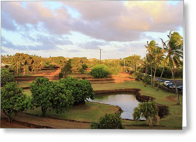 The Pond At Prince Kuhio Park Greeting Card by Bonnie Follett