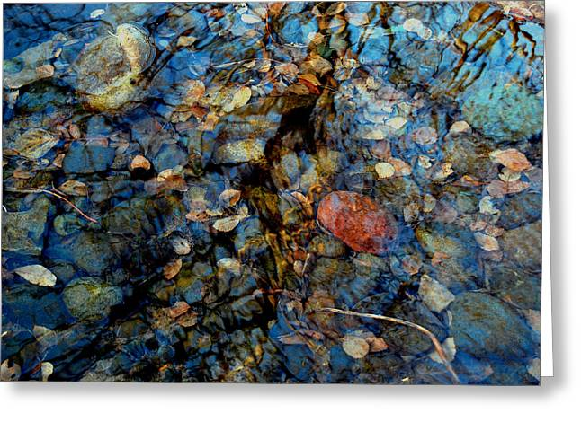 The Pond In Autumn Greeting Card by Marilynne Bull