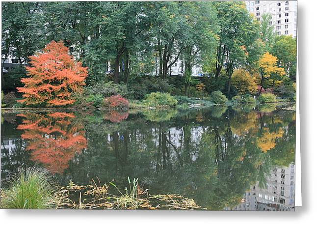 The Pond In Central Park In Fall Greeting Card by Christopher Kirby
