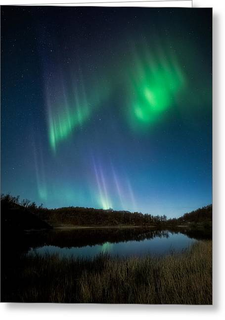 The Pond Greeting Card by Tor-Ivar Naess