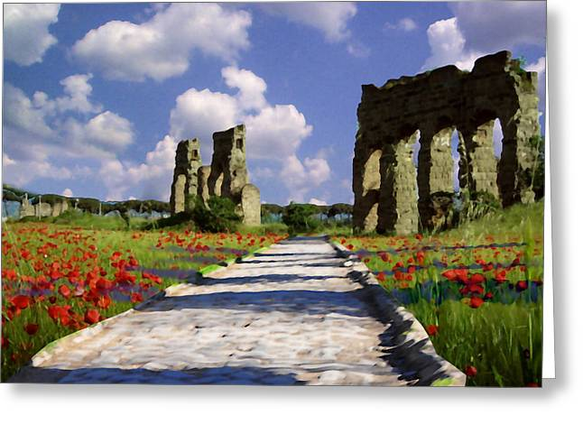 The Poppy Ruins Greeting Card by David Zimmerman