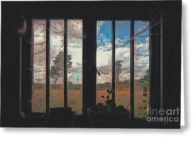 The Potting Shed Window  Greeting Card