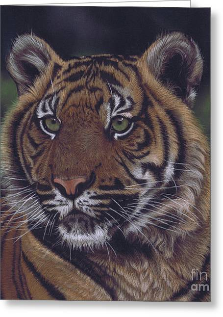 The Prince Of The Jungle Greeting Card