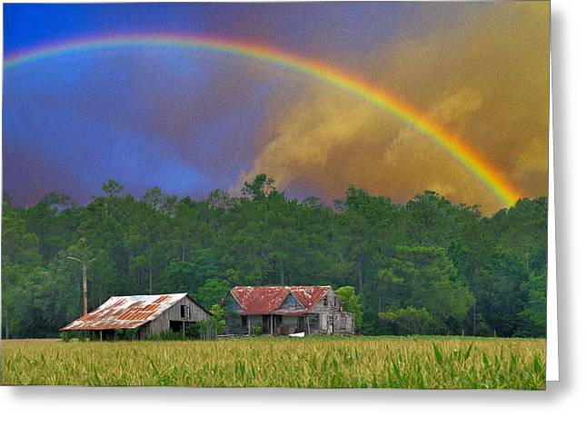 The Promise Greeting Card by Jan Amiss Photography