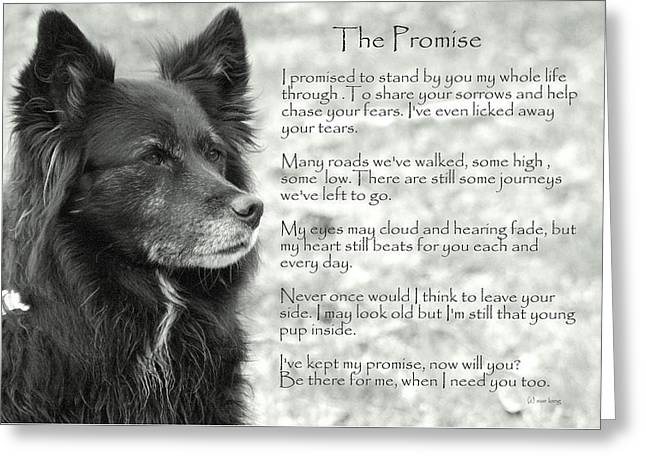 The Promise Greeting Card
