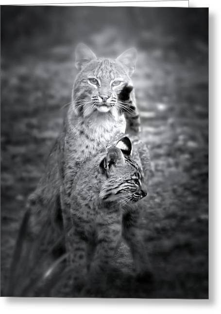 The Protector Greeting Card