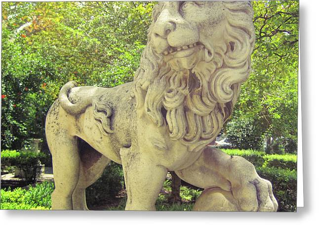 The Proud Lion  Greeting Card by JAMART Photography