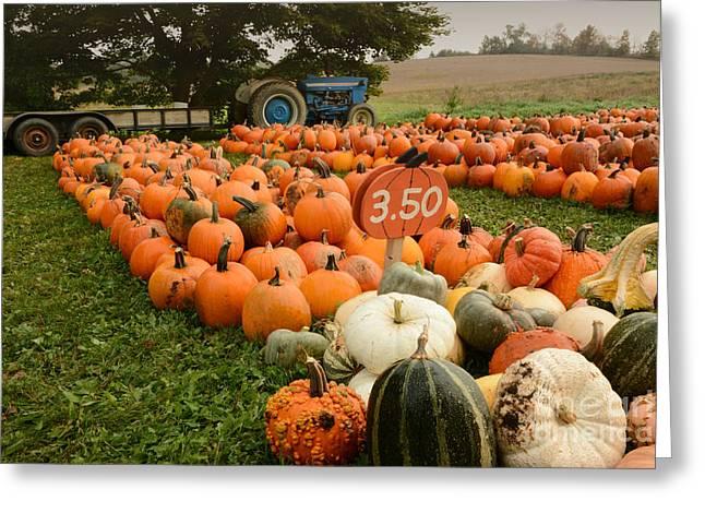 The Pumpkin Farm One Greeting Card