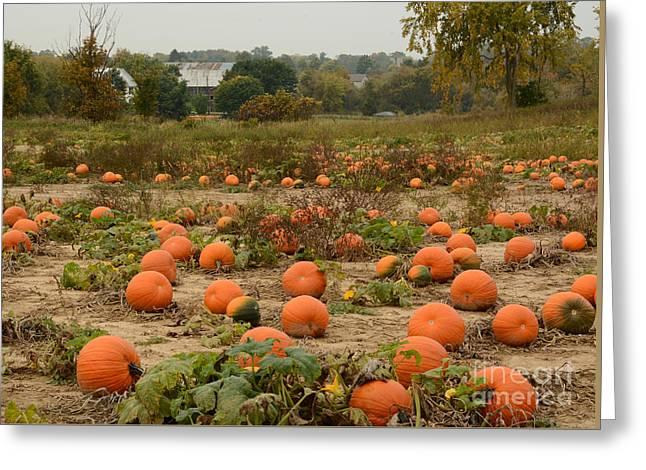 The Pumpkin Farm Two Greeting Card