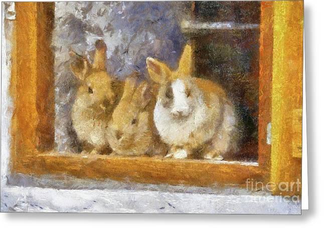 The Rabbit Window By Sarah Kirk Greeting Card