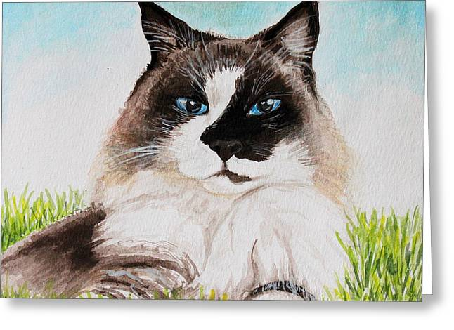 The Ragdoll Greeting Card