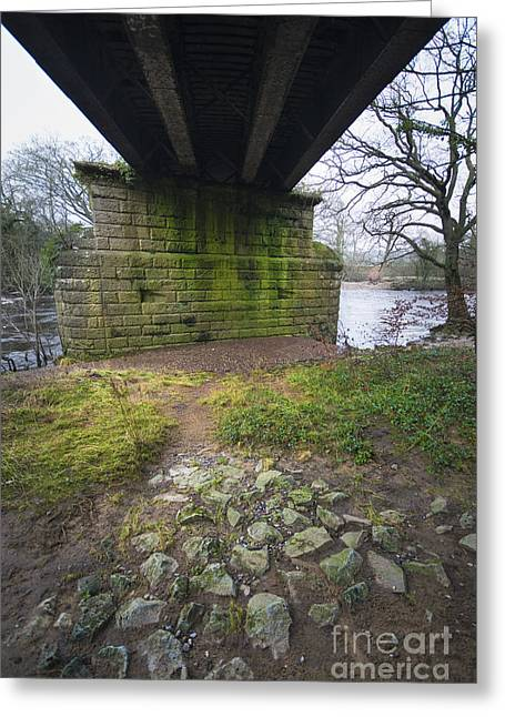 The Railway Bridge Greeting Card by Nichola Denny