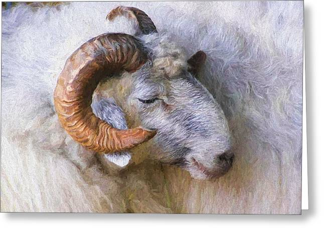 The Ram Greeting Card