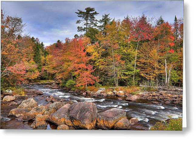 Greeting Card featuring the photograph The Rapids On The Moose River by David Patterson