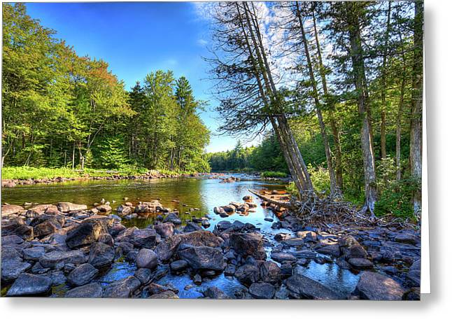 The Raquette River Greeting Card by David Patterson