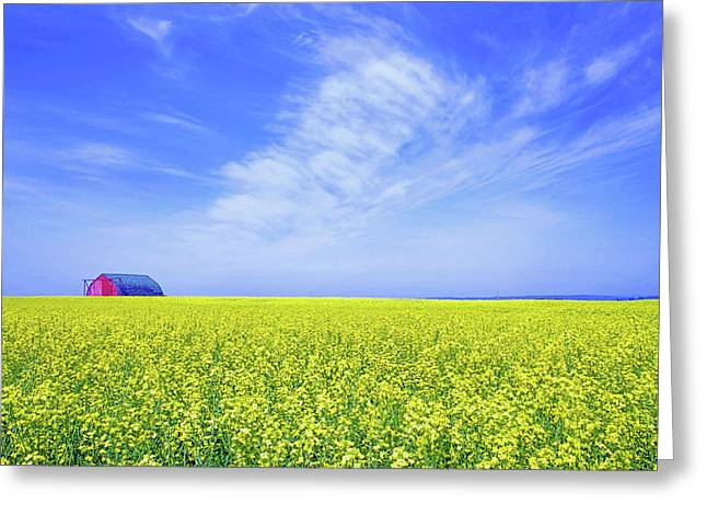 Greeting Card featuring the photograph The Red Barn by Keith Armstrong