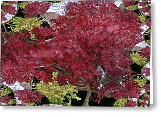 The Red Bushes Greeting Card