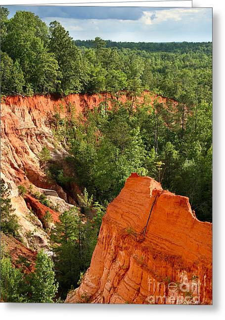 The Red Dirt Of Georgia Greeting Card