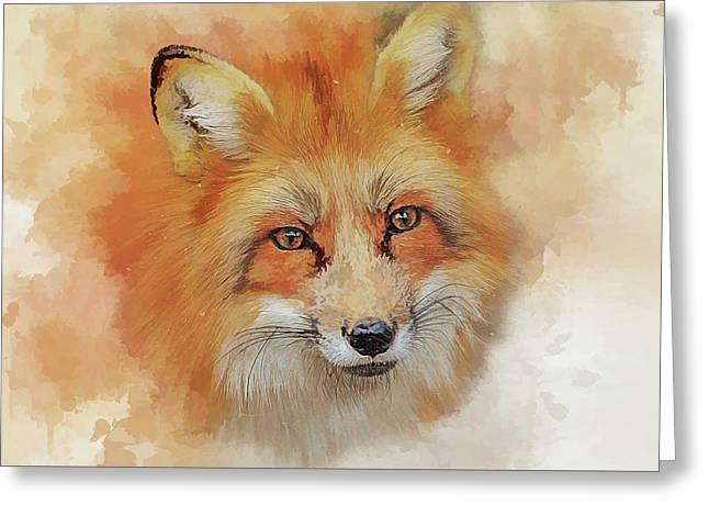 The Red Fox Greeting Card by Brian Tarr