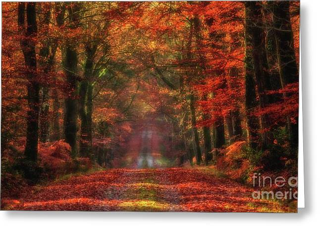 The Red Path 2 Greeting Card