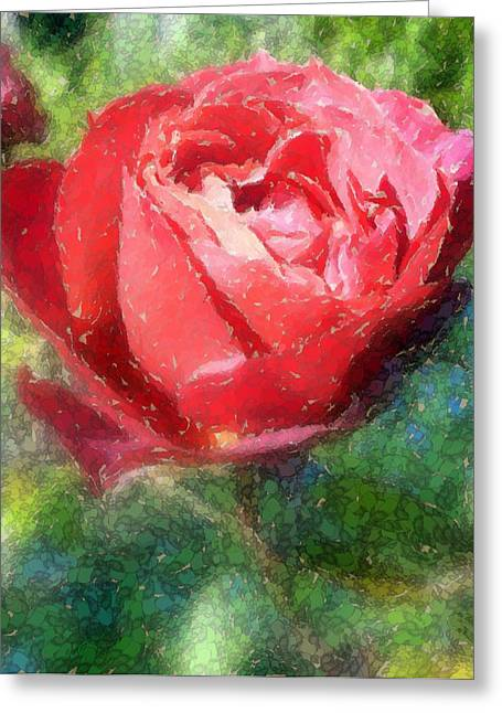 The Red Rose Greeting Card by Carol Grimes
