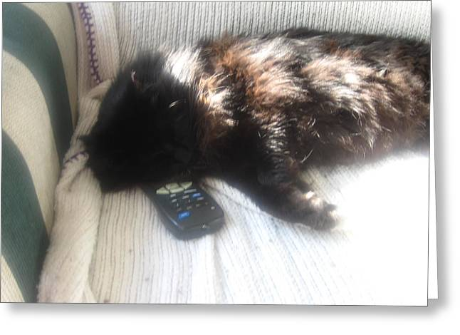 The Remote Is Occupied Greeting Card