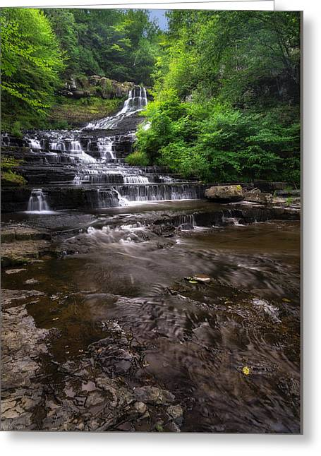 The Rensselaerville Falls 2 Greeting Card by Mark Papke