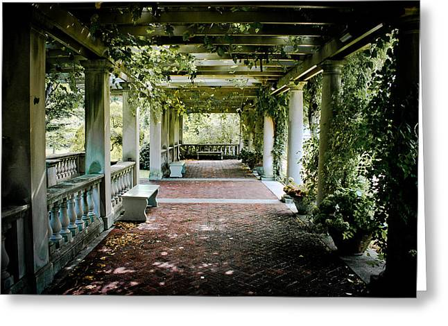The Resting Spot Greeting Card by Ken Marsh