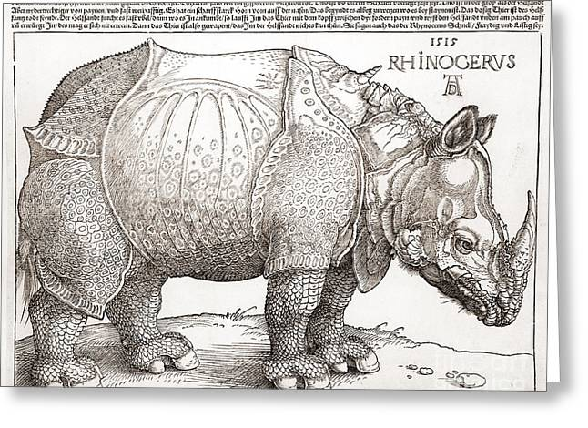 The Rhinoceros Greeting Card by MotionAge Designs