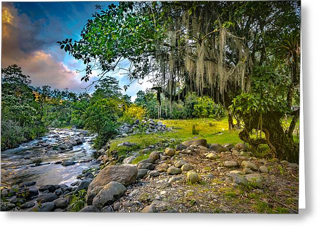 The River At Cocora Greeting Card