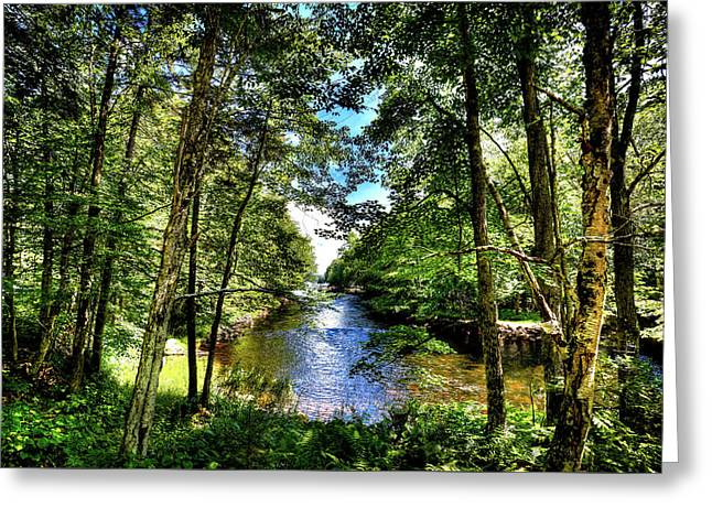 Greeting Card featuring the photograph The River At Covewood by David Patterson