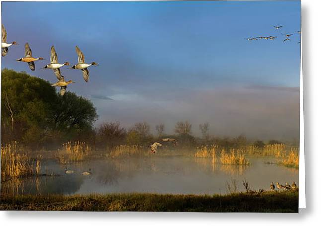 The River Bottoms Greeting Card