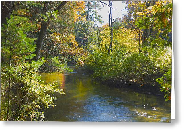 The River  Greeting Card by Sheryl Thomas