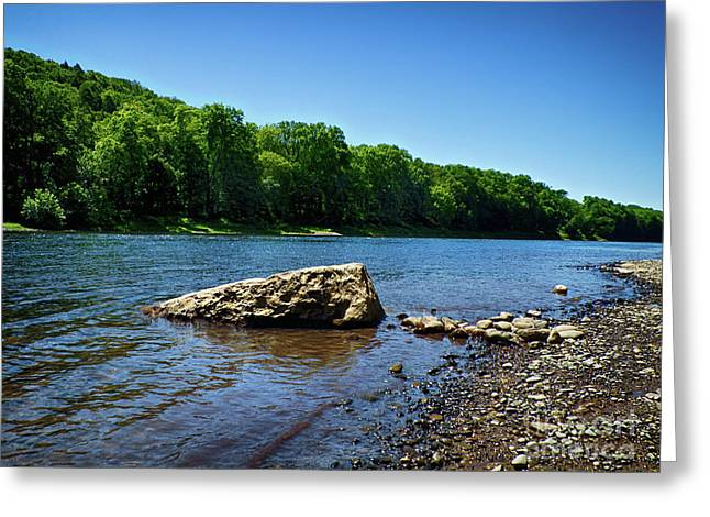 The River's Edge Greeting Card by Mark Miller
