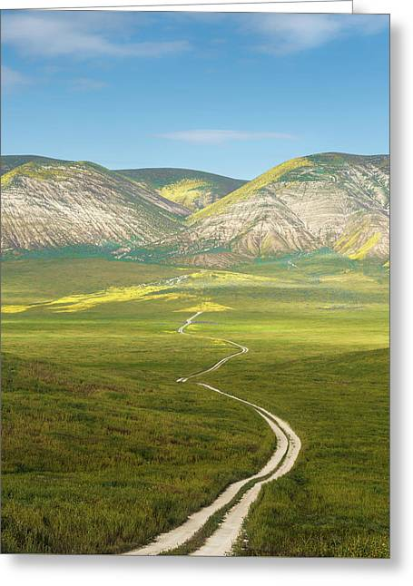 The Road Down Greeting Card