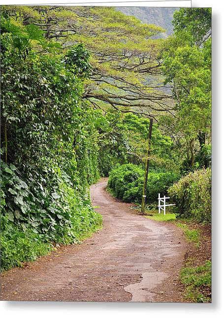 The Road Less Traveled-waipio Valley Hawaii Greeting Card