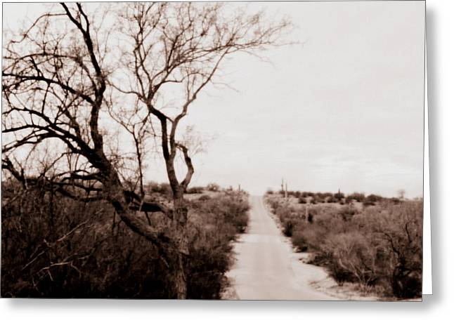 The Road Less Traveled Greeting Card by Nature Macabre Photography