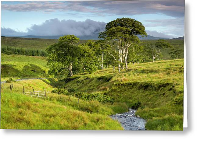 The Road To Carndonagh Greeting Card