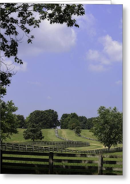 Richmond-lynchburg Stage Road Greeting Cards - The Road to Lynchburg from Appomattox Virginia Greeting Card by Teresa Mucha