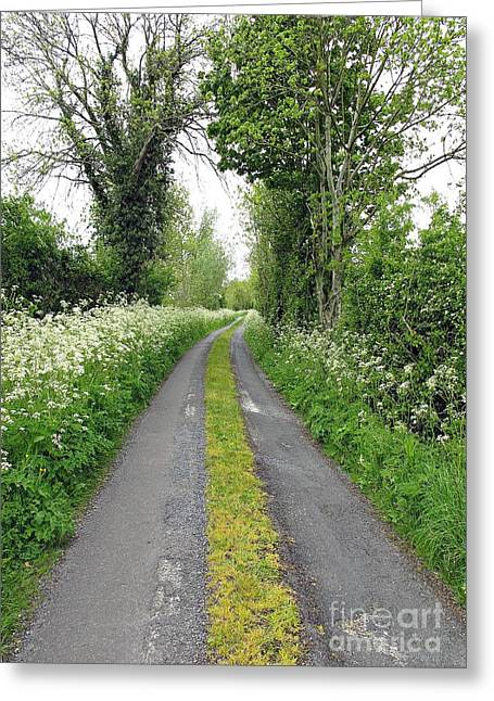 The Road To The Wood Greeting Card
