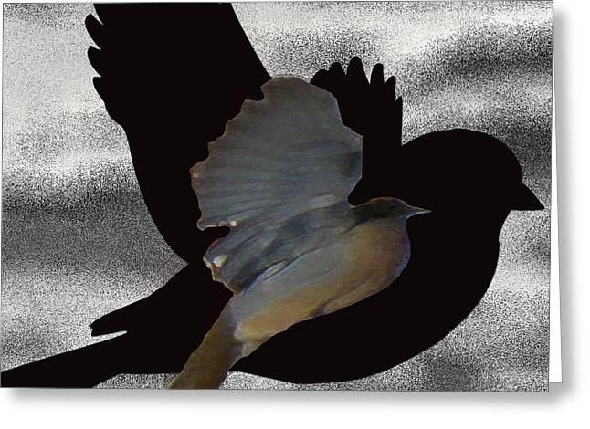 Bird On The Ground Greeting Cards - The Robin Flight  Greeting Card by Debra     Vatalaro