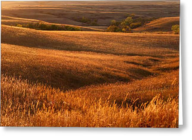 Prairies Greeting Cards - The Rolling Hills Of Konza Prairie Greeting Card by Jim Richardson