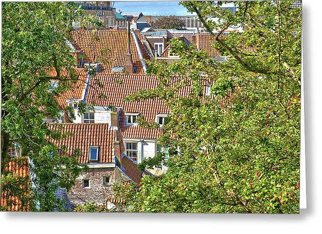 The Rooftops Of Leiden Greeting Card