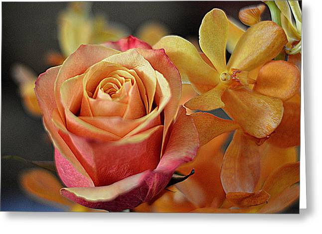 Greeting Card featuring the photograph The Rose And The Orchid by Diana Mary Sharpton