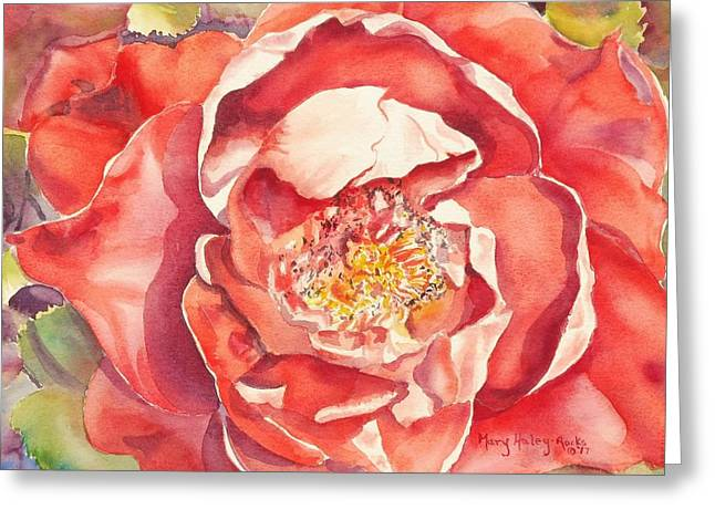 Greeting Card featuring the painting The Rose by Mary Haley-Rocks