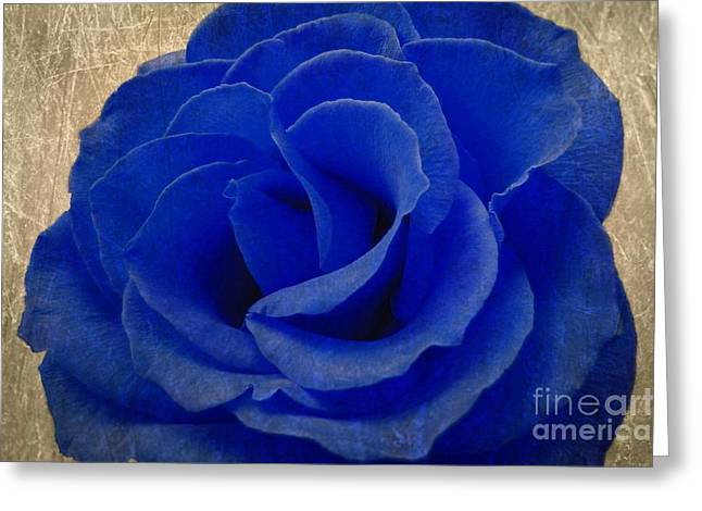 Jeff Greeting Cards - The Rose of Sadness Greeting Card by Jeff Kolker