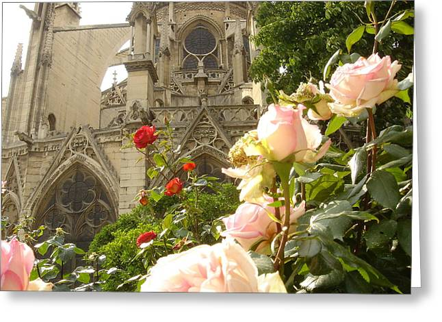 The Roses Of Notre Dame Greeting Card by John Julio