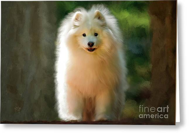 The Samoyed Smile Greeting Card