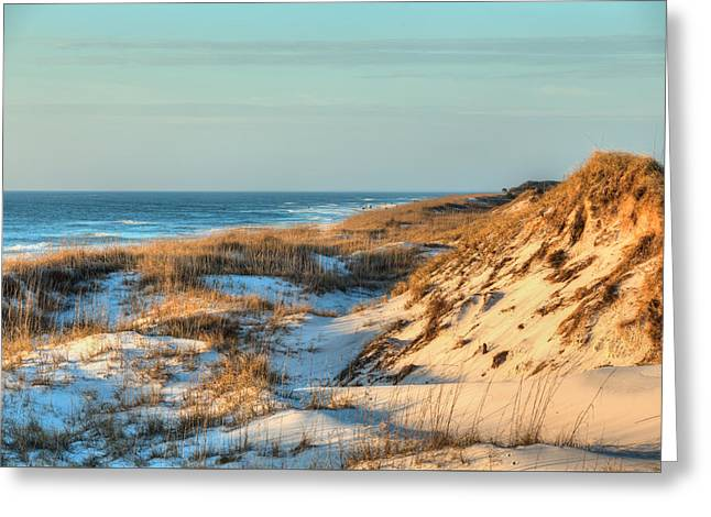 The Sand Dunes Of St Joe State Park Greeting Card by JC Findley