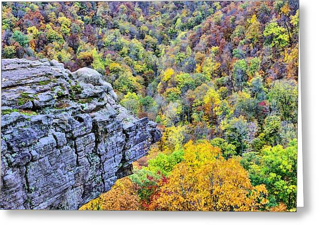The Scenic Overlook Greeting Card by JC Findley